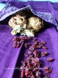 biscotti avena-fruttirossi