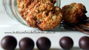 biscotti avena-cioccolato4